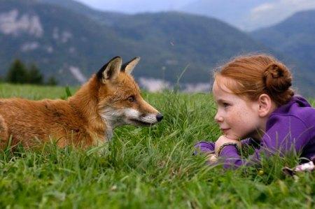 mergaitė ir lapė