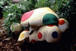 nina-katchadourian-renovated-mushroom
