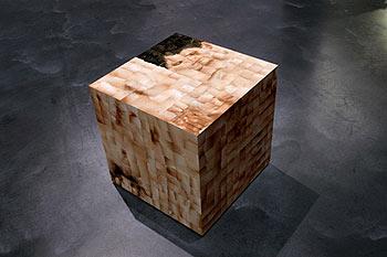 A.Gudaitis. Ribų išklotinė (1,94 kv.m.) 2001. Skaitmeninės fotografijos, medis